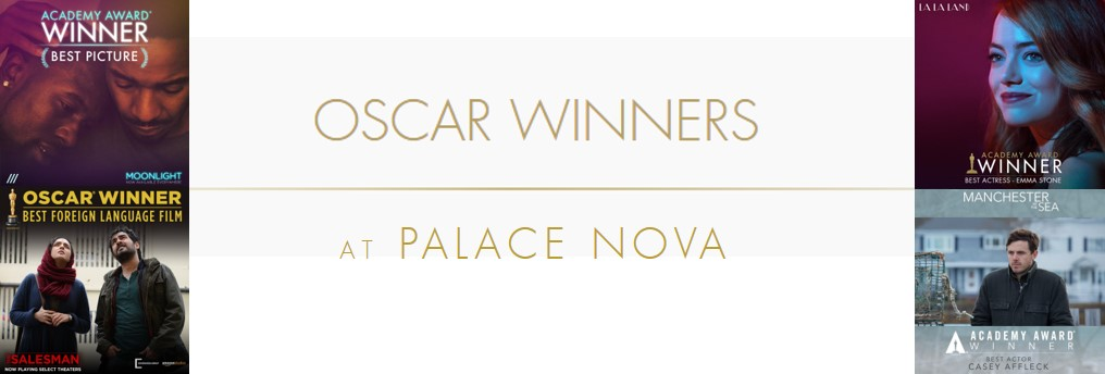 Just a taste of the many Academy Award Oscar Nominated films - Now, Soon, Shown or Returned @PalaceNova