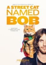 Poster for A Street Cat Named Bob  (PG)