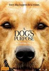 Poster for A Dog's Purpose (PG)